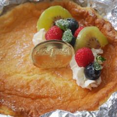 ローカーボ/糖質制限/低糖質/チーズケーキ 低糖質チーズケーキ