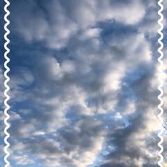 おすわり/おりこうさん/まりん/飛行機✈️雲/朝の雲 昨日のあ散歩で見た雲です。 少し異様な感…