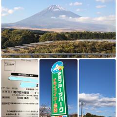 ラッキー!/ソフトクリーム🍦/富士山🗻/日帰り旅行/伊豆フルーツパーク/おでかけ/... 250回目の投稿です。 無料バスツアーが…