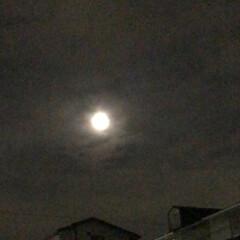 温泉/綺麗な月/思わずパシャリ/中秋の名月/おでかけ/LIMIAおでかけ部/... 昨日、気晴らしに温泉に行き 帰りに空を見…