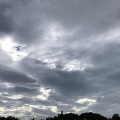 願い事/七夕/雲/クランベリー/あ散歩 おはようございます。 ☔️は止んでますが…(3枚目)