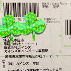 まりん/シャンプー/笑顔/LIMIAプレゼント当選/カインズ収納小物ケース まりんは昨日シャンプーしてきました。 ふ…(4枚目)