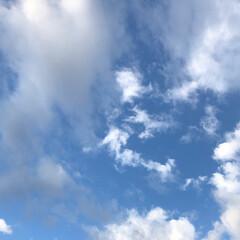 影法師/くんくん/お友達/秋の空/おでかけ/フォロー大歓迎/... 昨日12日の朝 雲が多いけど、綺麗な空で…