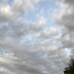 まりん/お月様/今日の空 今日夕方の空です。 お月様がうっすら見え…