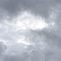 雨☔️/座り込み/父の日プレゼント/空/あ散歩/まりん おはようございます。 今朝も雨☔️です💦…