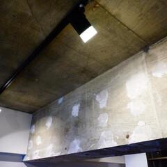 コンクリート/天井 築31年のマンションリノベーション。 天…