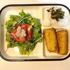ニムキッチン/料理練習中 チキンリソルと言うインドネシアの料理を作…