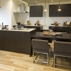 キッチン/ダイニングルーム/LDK、家具 加熱機器とシンクを分けたキッチン。 ふた…