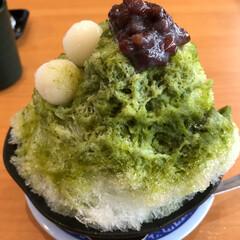 美味しい/安い/宇治抹茶/くら寿司/グルメ/フード/... くら寿司のかき氷は意外と美味しい