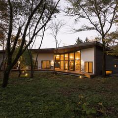 外壁/デッキ/庭/木製サッシ 保存緑地の緩やかな斜面に面した各部屋から…