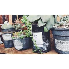 サビ塗装/リメ缶/多肉植物 空き缶に、黒板塗料とアクリル絵の具でサビ…