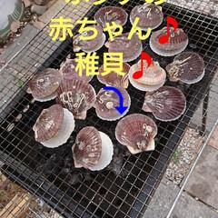 牡蠣/BBQ/うちの定番料理 今日もお疲れ様でーす🤗 なんとなくムシム…