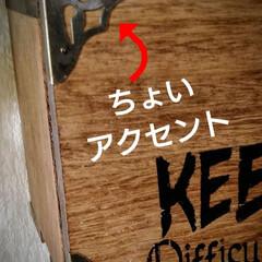 木工雑貨/男前DIY/猫さん大好き/お家時間/カフェ風インテリア/ブライワックス/... 暑い💦暑い💦 ペーパーホルダー第2弾です…(2枚目)