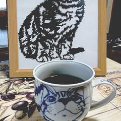 珈琲タイム/猫ちゃんカップ おはようございます‼️ 昨夜は北海道凄い…