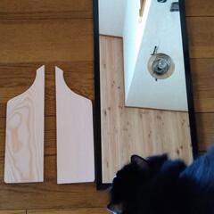アンティーク調/カッティングボードDIY/猫さん大好き/お家時間/カフェ風インテリア/北海道/... 以前アップした、ダイソー長方形鏡300円…(5枚目)
