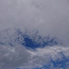 北海道/空 おはようございます‼️ 北海道元気ですよ…