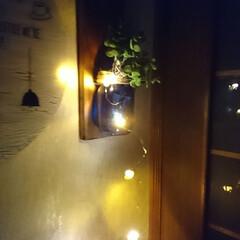 ランプ/ガラスペイントターナー/キャンドゥ/ダイソー/セリア/100均/... 100均のLEDライトシリーズ凄い⤴️⤴…(6枚目)