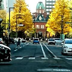 札幌/北海道/秋/おでかけ 今日は札幌に来ていまーす‼️ お天気最高…
