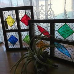 ターナー ガラスペイント 40mL A色 単色   ターナー(その他塗料、塗装用メッキ)を使ったクチコミ「セリアフォトフレームDIY🛠️ いつもの…」(4枚目)
