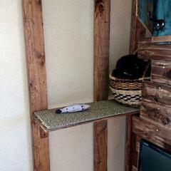 黒猫/ラブリコ/キャットウォークDIY🛠️/暮らし/DIY/わたしの作業部屋 おはようございます🤗 只今、室温24.5…(8枚目)