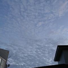 今日は寒い/北海道 北海道。台風に大地震😢 空を見ると・・・…