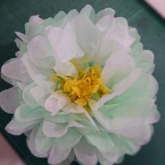 おはな/春のフォト投稿キャンペーン/ハンドメイド/おうち自慢 連続投稿すみません😅 進化番✨お花の作り…