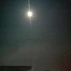 北海道も春間近🎵/小さい春 ふと、見ると・・・ 月が素敵✨ 今日もあ…