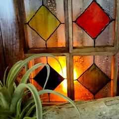 ターナー色彩 ガラスペイント 40ml 蜂蜜 GP040005(ペンキ、塗料)を使ったクチコミ「セリアのガラスフォトフレームを使った、フ…」