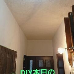 まだまだ続くよ/珪藻土/漆喰/天井と戦う/DIY/住まい DIY生活‼️ 本日の報告です😀 早速、…