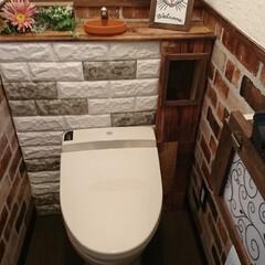 タンクレストイレ/トイレ/DIY/セリア/ダイソー 今年、一番のDIY,トイレタンクレスに挑…
