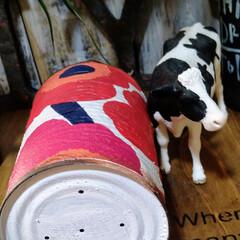 アンティーク エイジング 塗料 P-Effector ザラザラベース(ペンキ、塗料)を使ったクチコミ「リメ缶多肉植物サイズです。底穴が空いてる…」(6枚目)