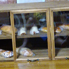 カフェ風キッチングッズ/木工雑貨/北海道/猫さん大好き/ブレッドケース/カフェ風インテリア/... ブレッドケース! まだ、未完成なんですが…(3枚目)