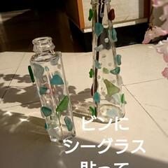 春のフォト投稿キャンペーン/平成最後の一枚/フォロー大歓迎/令和カウントダウン/春/雑貨/... 空き瓶に友達のお嬢さんからもらった シー…