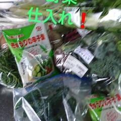 野菜/道の駅/令和元年フォト投稿キャンペーン/おすすめアイテム/LIMIAごはんクラブ/おうちごはんクラブ/... 足りないもの仕入れにダイソーへ💨 帰りに…