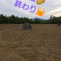 北海道/新ジャガ/わたしのごはん 今年も友farmer🎵 🥔いも収穫無事終…(3枚目)
