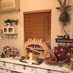 クリスマスディスプレイ/ハンティングトロフィー/木製のクリスマスオブジェ リビングのクリスマスディスプレイ