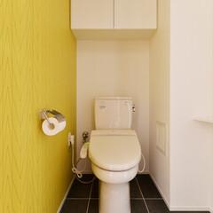 トイレ/イエロー/壁/アクセントカラー
