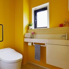 トイレ/リノベーション/カラー/アクセントカラー/イエロー/ビビット/...