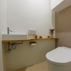 トイレ/タイル/手洗い/収納/棚/カラー