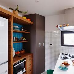 家電収納/DIY/キッチン/収納/棚/アクセントカラー/...