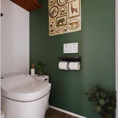 トイレ/リノベーション/マンション/アクセントカラー/モスグリーン/アクセントウォール