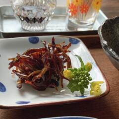 和食/いかなごの釘煮/いかなご/朝ごはん/おうちごはん   2021.3.12 金曜日 今日の朝…(3枚目)