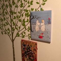 アドベントカレンダー/ウォールステッカー アドベントカレンダーを壁の木の所にオーナ…