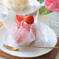 わたしのお気に入り/ケーキ/ピンク/カワイイ/母の日/うれしい/... 先月の『母の日』に我が息子が買ってきてく…