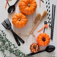 ハロウィン/かぼちゃ/ハロウィンアイテム/ハロウィンカトラリー/ほうき/ハロウィングッズ/... レシピ写真を撮っていると毎年徐々に集まっ…