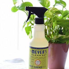 掃除/拭き掃除/Mrs.MEYER'S CREAN.../キッチン&マルチクリーナー/レモンバーベナの香り/植物由来成分配合/... お掃除に使用する洗剤ですらちょっとオシャ…