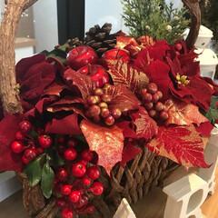 ポインセチア/クリスマス/りんご/お正月/アレンジメント/アーティフィシャルフラワー/... 毎年作るクリスマスアレンジメント!お正月…
