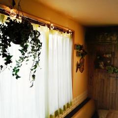 板壁/テーブル/いなざうるす屋/クッションレンガシート/電球ガーランド/DIY/... 電球ガーランドが似合う気候になってきまし…