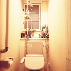 内窓DIY/トイレ/DIY/ハンドメイド/雑貨/100均/... 飾ってある物を全部オキシクリーン漬けして…