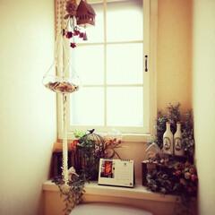 内窓DIY/DIY/ハンドメイド/雑貨/100均/ダイソー/... 12月になりましたね〜 LIMIAでいた…